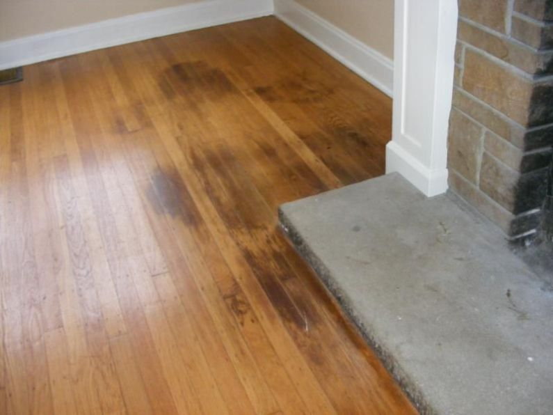 Cleaning Pet Stains On Laminate Floors